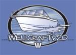 V20 logo