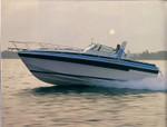 3100 Express Cruiser